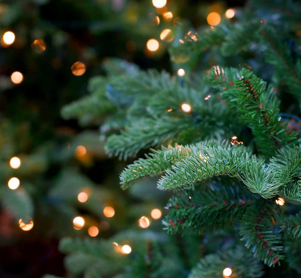 Tradycja świątecznych koncertów